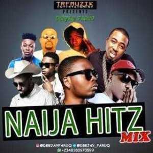 DJ Faruq - Naija Hitz Mixtape